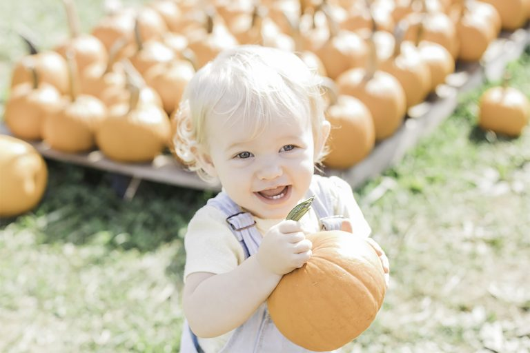 Olivine Fox - Catoctin Orchard - Thurmont Maryland - Maryland Family Photographer - Pennsylvania Family Photographer - Fall Family Photos