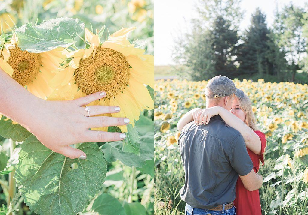 Olivine Fox - Firelight Farm Engagement Session - Bozeman Montana Wedding Photographer - Bozeman Montana Engagment Session - Bozeman Wedding Venue - Montana Barn Wedding - sunflower field