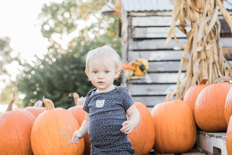 Olivine Fox - Warm Glow Candle Company - Fall Mini Session - Maryland Family Photographer - Pennsylvania Family Photographer - Pumpkin Patch Photoshoot