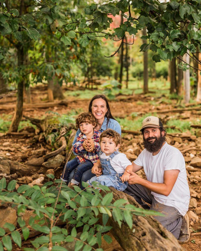 Olivine Fox - Catoctin Mountain Farm - Maryland Farm