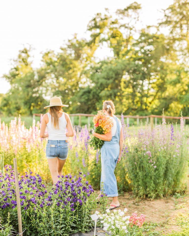 Olivine-Fox-Hiddenvale-Flowers-Lineboro-Maryland-Carroll-County-Maryland-Wedding-Florist